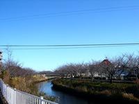 20121216_船橋市_海老川遊歩道_ジョギングロード_1130_DSC06191