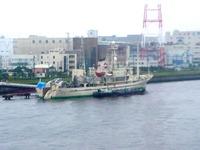 20050714_船橋市浜町2_海洋技術開発_探査船第2白嶺丸_0954_DSC01451