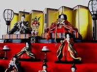 20070212_ひな祭り_ひな飾り_ひな人形_1121_DSC08757T