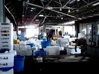 20130601_船橋中央卸売市場_ふなばし楽市_0926_DSC00089