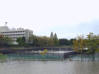 20131016_台風26号_柏市_スポーツ施設_柏の葉庭球場_010