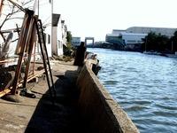 20110326_東日本大震災_船橋市栄町2_堤防破壊_1551_DSC08897T