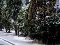 20130114_船橋市_関東地方_低気圧_成人の日_大雪_1141_DSC09743