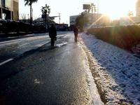 20130115_船橋市_関東地方_低気圧_成人の日_大雪_0738_DSC09813