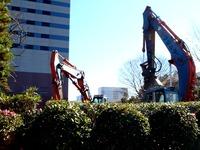 20111217_三井ガーデンホテルズ船橋ららぽーと_1113_DSC05413