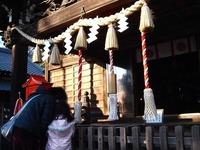 20120102_習志野市津田沼3_菊田神社_大杉神社_初詣_1500_DSC08593