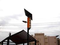 20130323_船橋市北本町1_森のシティ_公園_さくら公園_1541_DSC07428