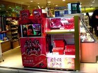 20120330_東京駅_AKB48_東京パステルサンド_1910_DSC08649