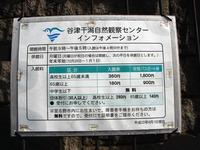 20111112_習志野市秋津5_谷津干潟自然観察センター_0933_DSC00220