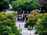 20130502_東京都_葛西臨海公園_鯉のぼり_0811_DSC04521