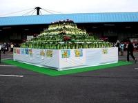 20121111_船橋市市場1_船橋中央卸売市場_農水産祭_1000_DSC00964