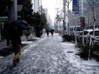 20120229_首都圏_冬型_寒気_寒波_大雪_積雪_1153_DSC06247