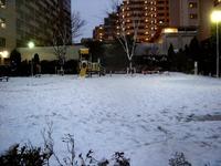 20130114_船橋市_関東地方_低気圧_成人の日_大雪_1656_DSC09799