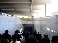 20131222_船橋市_JRA_中山競馬場_有馬記念_1132_DSC05655