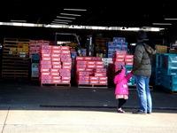 20120303_船橋市市場1_船橋中央卸売市場_ふなばし楽市_0921_DSC06343
