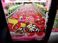 20130220_JR南船橋駅_ひな祭り_勝浦ひな祭り_雛人形_1937_DSC01138
