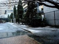 20130114_船橋市_関東地方_低気圧_成人の日_大雪_1141_DSC09742
