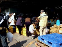 20120303_船橋市市場1_船橋中央卸売市場_ふなばし楽市_1111_DSC06647