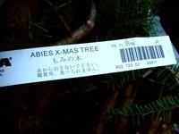 20121118_イケア船橋_モミの木クリスマスツリー_1508_DSC02317