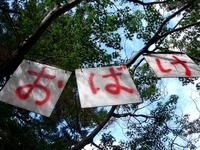 20120804_船橋市薬円台_習志野駐屯地夏祭り_1532_DSC06011