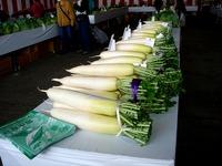 20121111_船橋市市場1_船橋中央卸売市場_農水産祭_1035_DSC01039