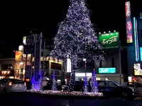 20131127_JR西船橋駅_北口_クリスマスツリー_2009_4830