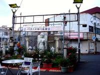 20130615_習志野市_谷津サンプラザ商店街_女神_170936_DSC02528