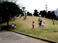 20130320_船橋市若松3_若松公園_桜_1151_DSC05994