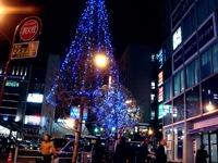 20121115_JR市川駅前_シャポー市川_クリスマス_1917_DSC01380