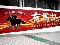 20131130_船橋市_JRA_中山競馬場_有馬記念_1702_DSC00821