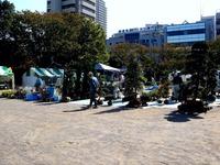 20121021_船橋市本町1_秋の緑と花のジャンボ市_1111_DSC07361