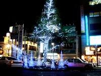20121115_西船橋駅北口ロータリー_クリスマスツリー_1953_DSC01501