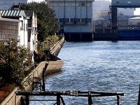 20110326_東日本大震災_船橋市栄町2_堤防破壊_1557_DSC08915T