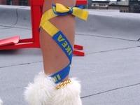 20100829_IKEA_イケア_ナイロン買い物袋_意外な使い方_082