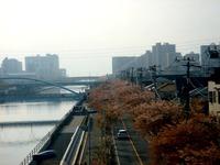 20130405_関東圏_観測史上最高_強風_暴風雨_傘_0805_DSC09433