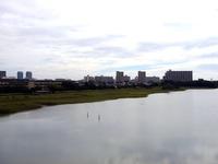 20130824_習志野市_ラムサール_谷津干潟の日記念_0852_DSC06921