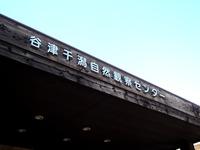 20130119_習志野市谷津干潟自然観察_大もちつき会_1410_DSC00424