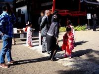 20121103_船橋市三山5_二宮神社_七五三_1234_DSC09753