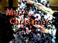 20121223_千葉県立幕張総合高校_合唱団_クリスマス_1740_DSC07394T