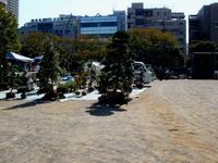 20121021_船橋市本町1_秋の緑と花のジャンボ市_1111_DSC07363