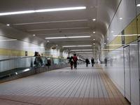 20131130_船橋中山競馬場_クリスマスイルミネーション_1657_DSC00818