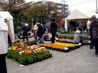20120421_船橋市本町7_緑と花のジャンボ市_1024_DSC09468