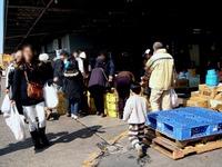 20120303_船橋市市場1_船橋中央卸売市場_ふなばし楽市_1111_DSC06646