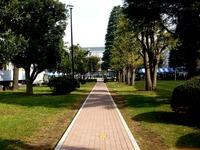 20131103_船橋市_日本大学理工学部_習志野祭_1252_DSC07023
