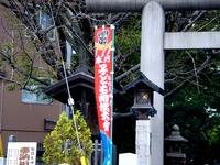 20121014_船橋大神宮_奉納子ども相撲大会_1145_DSC06559