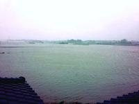 20131016_台風26号_家の裏の田んぼ