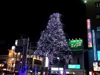 20131127_JR西船橋駅_北口_クリスマスツリー_2009_4820