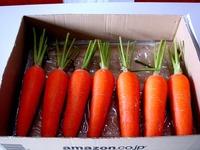 20121111_船橋市市場1_船橋中央卸売市場_農水産祭_1036_DSC01061