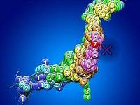20110311_1446_東日本巨大地震_地震速報_震度_255924386T
