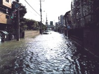 20131016_台風26号_市川市内一部地域_冠水_032